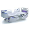 A-003 Five function electric hospital bed